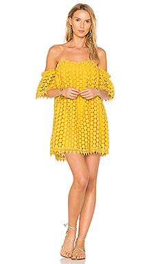 x REVOLVE Amelia Dress